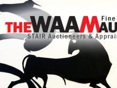WAAM Fine Arts Benefit Auction 2017