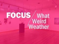 FOCUS: What Weird Weather